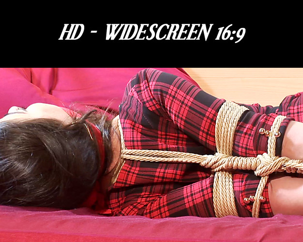 Beautiful Lorena Hogtied! 4